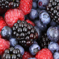 frutti minori frutti piccoli antichi